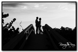 engagement session clearwater