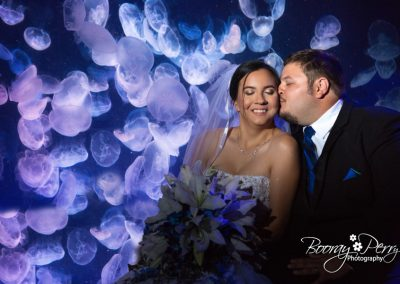 Wedding Tampa Aquarium 014